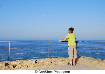 menino, quay, olhando jovem, 3, horizonte, sonhar, feliz