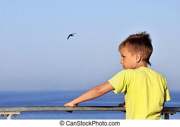 menino, quay, olhando jovem, horizonte, sonhar, feliz