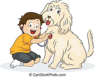 menino, seu, tocando, cão, doutor