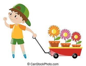 menino, vagão, puxando, carregado, flores, vermelho