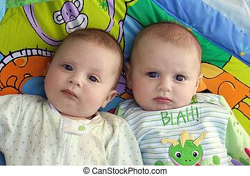 meninos bebê, dois