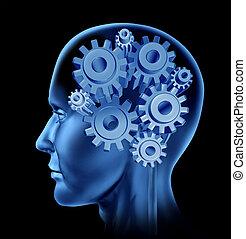 menneske, intelligens, og, hjerne, funktion