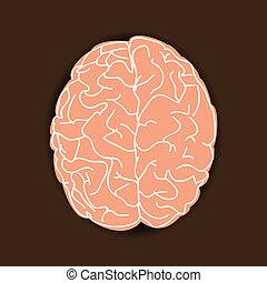 menneskelig hjerne, på, brun baggrund
