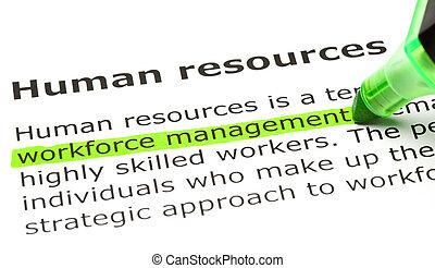 menneskelige ressourcer, definition