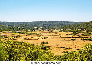 Menorca island landcape with farmland and green hills