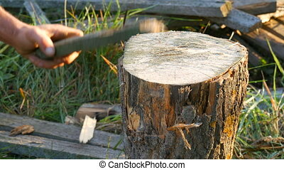 Men's hands chop firewood with an ax on a special stump on a background of beautiful green grass in the setting sun. Man chopping wood for the grill, fireplace or stove close up view
