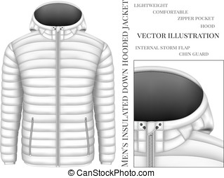 Men's hooded insulated down jacket with zip pockets. Vector...