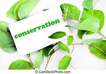mensagem, conservação, folhas