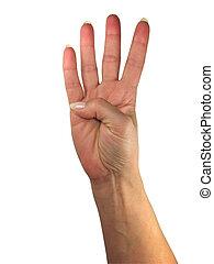 menschliche , ausstellung, freigestellt, hand, vier, finger, hintergrund, weißes, dame, aus