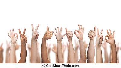 menschliche hände, ausstellung, daumen hoch, ok, und, frieden unterzeichnet