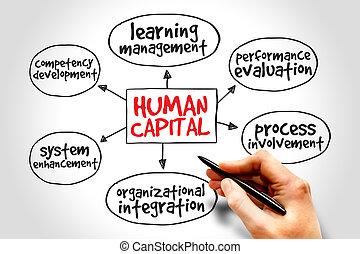 menschliche, Hauptstadt