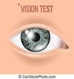menschliches auge, vector., sichten, eyesight., koerper, care., realistisch, detail, vision, abbildung