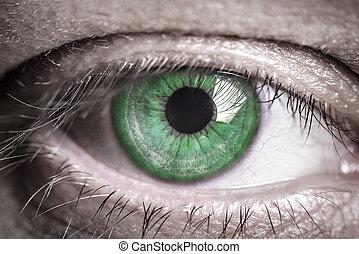 menselijk, groene, eye.