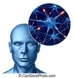 menselijk, intelligentie, met, actief, neurons