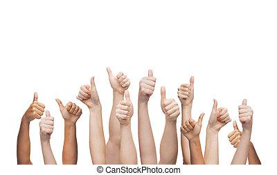 menselijke handen, het tonen, beduimelt omhoog