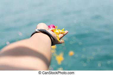 menselijke handen, vasthouden, kleurrijke, bloem