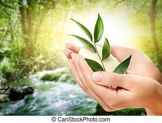 menselijke handen, vasthouden, organisch, zeep