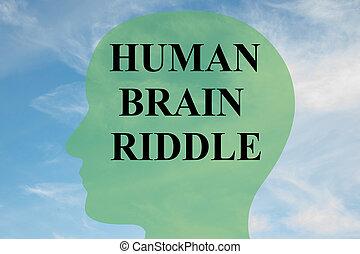 menselijke hersenen, raadsel, concept
