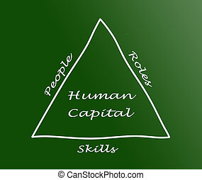 menselijke hoofdstad