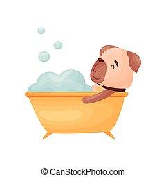 mensonges, bath., chien, illustration, arrière-plan., vecteur, blanc, dessin animé