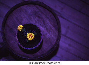 menstruáció, sárga, váza