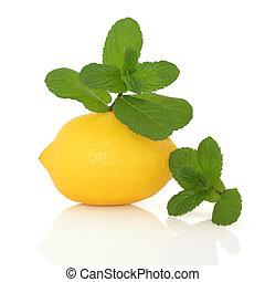 menta, erba, e, limone, frutta