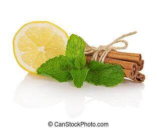 menta, palos, segmento, limón, canela