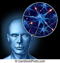 Mental stimulation - Human intelligence brain medical symbol...