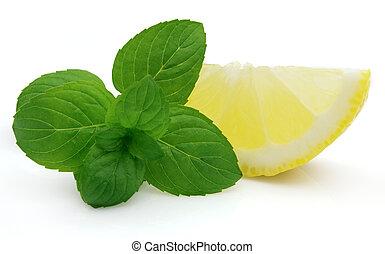 menthe, citron, juteux