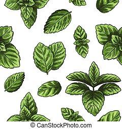 menthe, melissa, seamless, herb., vecteur, feuilles, vert, ...