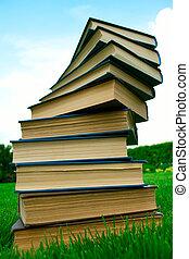 mentindo, livros, verde, pilha, capim