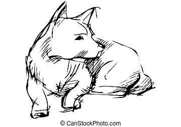 mentiras, bosquejo, perro, animal, hogar