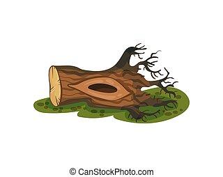mentiras, ilustración, nudo compuesto, fondo., grass., vector, blanco, raíces