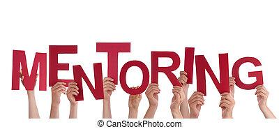 mentoring, tenant mains