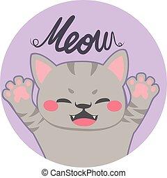 meow, poco, gatto