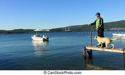 mer, chien, sauts