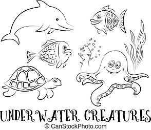 mer, contours, créatures