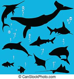 mer, fish, silhouettes