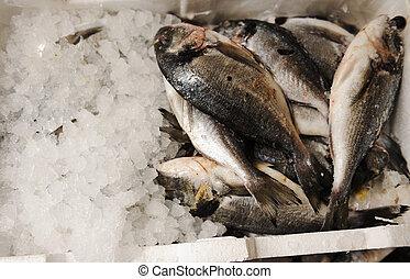 mercado fresco, peixe
