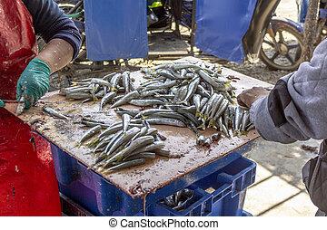 mercado, huarmey, pez, regia, silverside, odontesthes, ...