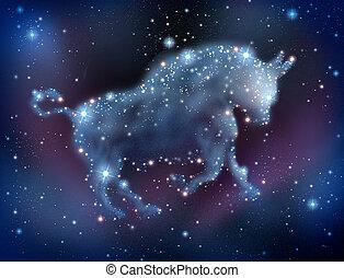 mercado touro, predições