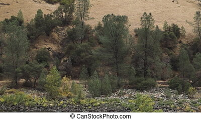 merced river landscape in daytime in autumn, footage