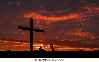 Mercy Salvation