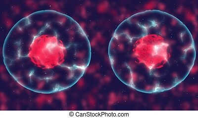 Video that demonstrates the fusion of cells.