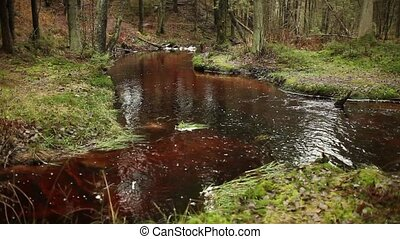 merging of forest rivers - merging of small forest rivers,...