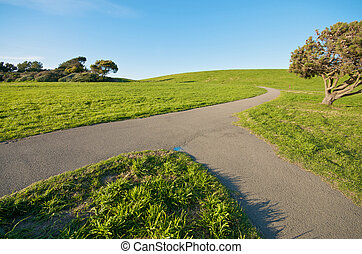 Merging path concept - Green Grass Landscape and blue sky at...