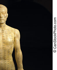 Meridian Lines On An Acupuncture Figurine