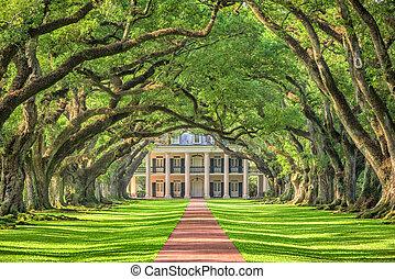 meridionale, piantagione, casa
