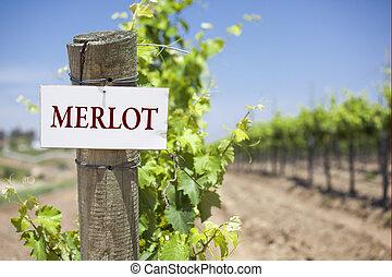 Merlot Sign On Vineyard Post