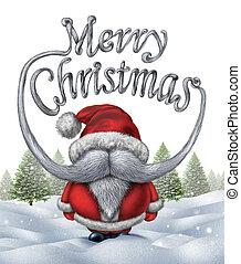 Merry Christmas Santa Claus - Merry christmas santa clause...